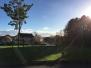 Parc Derwen